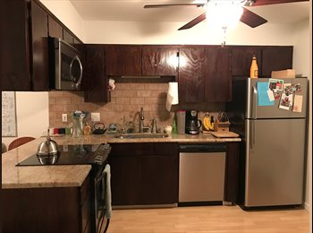 Room Available in a Cute Condo