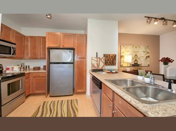 EasyRoommate US - Affordable room in South Austin, Southpark Meadows - $650 /mo