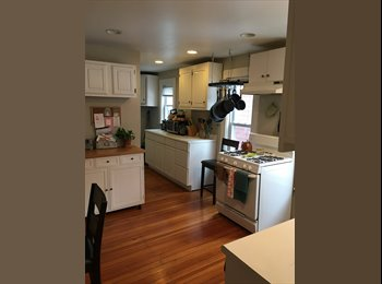 Room for Rent in Davis Square (Somerville)