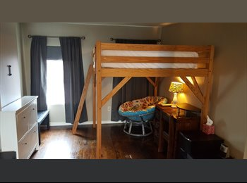 Roommate wanted in Barre Circle