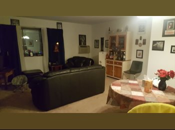 EasyRoommate US - Looking for a roommate in Burlington , Arlington - $743 /mo