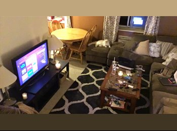 EasyRoommate US - Fun, clean, roommate! in the heart of Golden., Golden - $450 /mo