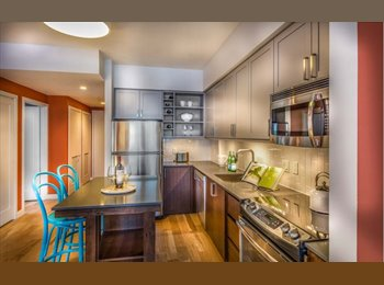 Gorgeous, Modern Room in Luxury Resort Style Apts - $1455