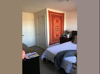 Large 1 bed 1 bath room for rent