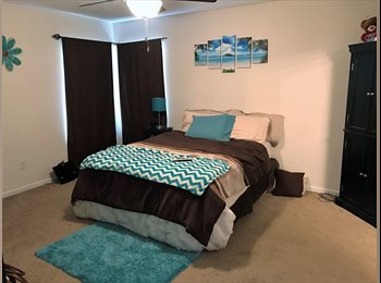 EasyRoommate US - Master Bedroom with own bathroom and Large walk-in closet! , Golden Glades/The Woods - $540 /mo