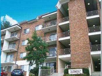 EasyRoommate US - Terrace Apartments, Birmingham - $387 /mo