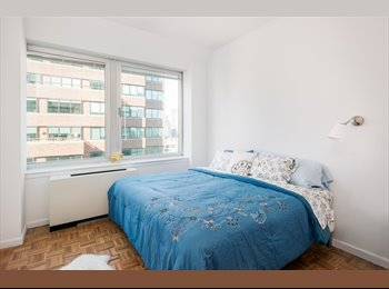 Incredible double room in Financial District!