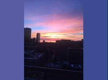 EasyRoommate US - Seeking female roommate for amazing South Loop/Printers Row 2 bed/2 bath with awesome views, Chicago - $1,300 /mo