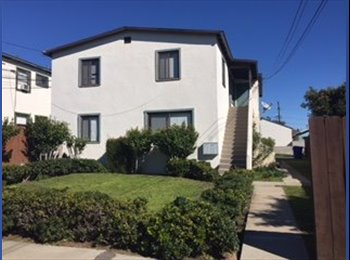 Private Bedroom in 2bd/1ba Apartment (AVAILABLE NOW)