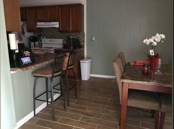 EasyRoommate US - Quiet roommate wanted, Timberlake - $700 /mo