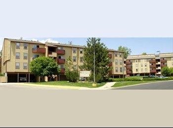 EasyRoommate US - Roommate wanted for Lakewood Apartment!, Lakewood - $650 /mo