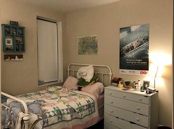 Quaint apartment with 2 fun roomies