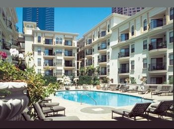 Young Professional Seeking Roommate at the Medici Downtown!