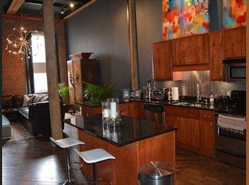 EasyRoommate US - Luxury Two Floor Furnished Apartment , Germantown - $1,500 /mo