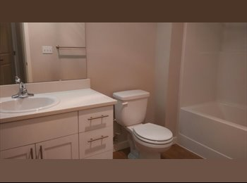 EasyRoommate US - Madison Bellevue  1 room with separate bath in 2B/2B apartment for female, Bellevue - $1,010 /mo