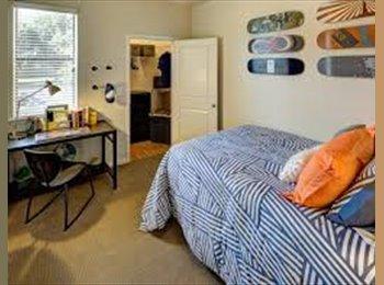 EasyRoommate US - Roommate needed in Central Arlington apartment!, Arlington - $655 /mo