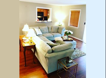 Need an AMAZING roommate for CUTE  condo at the Oceanfront!...