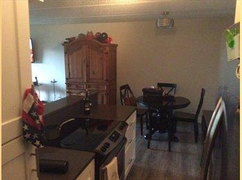 EasyRoommate US - South Tampa (SOHO) 2/ 2 CONDO. Room Mate wanted., Tampa - $975 /mo
