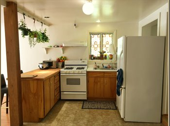EasyRoommate US - Fantastic Panhandle Room and Walk-In Closet with Back Patio, Cole Valley - $1,650 /mo
