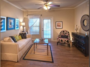 EasyRoommate US - Looking for a responsible working professional, Martin City - $600 /mo