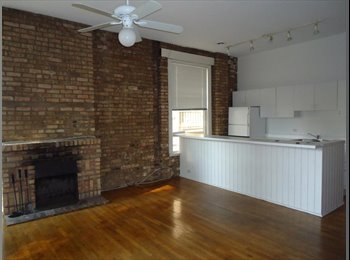 EasyRoommate US - APRIL 1st Lincoln Park One Bedroom Available in Two bedroom Apartment, Lincoln Park - $1,250 /mo