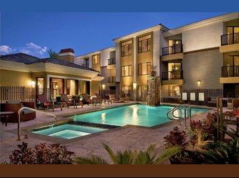 EasyRoommate US - North Scottsdale Roommate Wanted, Desert View Village - $700 /mo