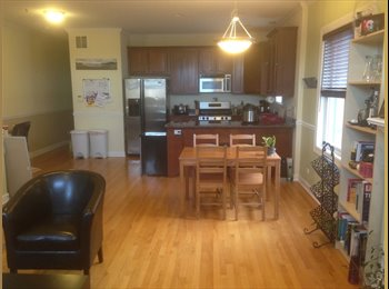 EasyRoommate US - Looking for roommate, young professional/student for a spacious Lakeview/Wrigleyville apartment with, Lake View - $1,100 /mo