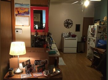 EasyRoommate US - Nice Room For Rent...., West Pullman - $550 /mo