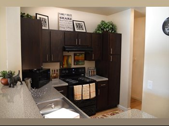 EasyRoommate US - Fully furnished, recentely renovated, perfect for students, San Marcos - $460 /mo