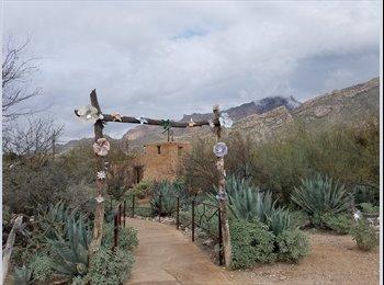 EasyRoommate US - Tim - 26 - Tucson