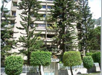 CompartoApto VE - Alquiler de habitación en la urbanización Terrazas del Ávila, Caracas - BsF 80.000 por mes
