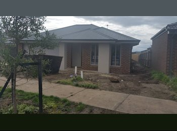 EasyRoommate AU - Armstrong Creek!! Brand New Home Reduced to $140pw - Torquay, Geelong - $600