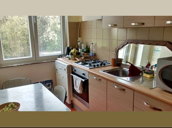Appartager BE - For 3 GIRLS only ;) 15min by tram to the center - Schaerbeek Schaarbeek, Bruxelles-Brussel - €420