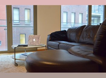 Appartager BE - Argentinian looking for a cool room mate - le Pentagone (centre ville), Bruxelles-Brussel - €550