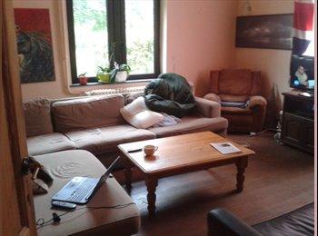 Appartager BE - Super coloc dans chouette maison - Namur-Namen, Namur-Namen - €353