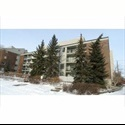 EasyRoommate CA Looking roomate(s) in South Edmonton - South West, Edmonton - $ 500 per Month(s) - Image 1