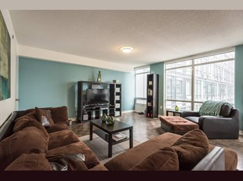 EasyRoommate CA - BEAUTIFUL ROOM IN LOFT TO RENT NEAR LAKESHORE! - Entertainment District, Toronto - $975