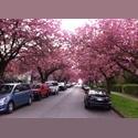 EasyRoommate CA Quiet neighborhoud, close to public transport . - Mount Pleasant, Vancouver - $ 500 per Month(s) - Image 1