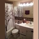 EasyRoommate CA 2 brdm1 bath - both rooms avail - Near York Uni - North Toronto, Toronto - $ 775 per Month(s) - Image 1