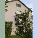 EasyWG CH 2 Zimmer frei in 6033 Buchrain - Lucerne / Luzern, Lucerne / Luzern - CHF 960 par Mois - Image 1