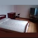CompartoApto CO Alquilo habitación Barrio Palermo Manizales - Manizales - COP$ 400000 por Mes(es) - Foto 1