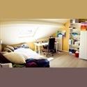 EasyKot EK Koten en studio's te huur aan de schaalstraat 17 - Centrum, Mechelen-Malines - € 300 per Maand - Image 1