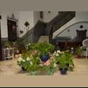 EasyPiso ES Habitaciones en una casa-palacio sevillana - Centro Ciudad, Centro, Sevilla - € 295 por Mes - Foto 1