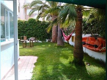 EasyPiso ES - Se alquila habitación individual en can Pastilla. - S´arenal - can pastilla - son ferriol, Palma de Mallorca - €295