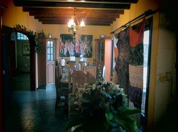 EasyPiso ES - Ocupado todo - Otras Áreas, Lanzarote - €300