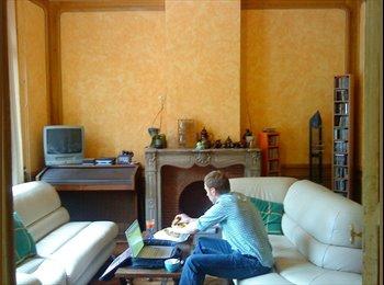 Appartager FR - Colocation centre Valenciennes, Maison de maitre - Valenciennes, Valenciennes - €435