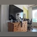 Appartager FR bien venus chez moi - Nord Centre Nice, Nice, Nice - € 350 par Mois - Image 1