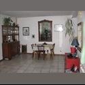 Appartager FR chambre dans une maison avec jardin - Montreuil, Paris - Seine-Saint-Denis, Paris - Ile De France - € 500 par Mois - Image 1