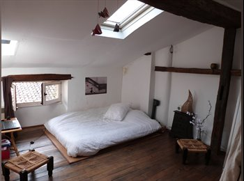 Appartager FR - chambre grand'rue - Poitiers, Poitiers - €300