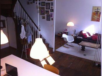 Appartager FR - grand chambre dans maison de ville avec jardin - Angoulême, Angoulême - €290